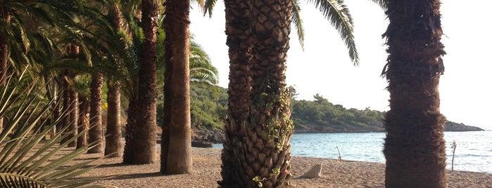 Boncuk Koyu Marmaris is one of สถานที่ที่ Cem ถูกใจ.