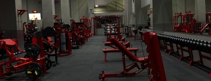 H2 Gym is one of Locais curtidos por Firas.