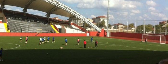 Avcılar Belediye Stadyumu is one of Rafet'in Beğendiği Mekanlar.