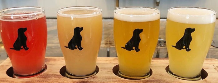 Black Lab Brewing is one of Toronto Map.