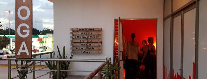 Yoga Dicha Studio is one of Mexico.