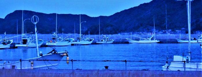 串本港 is one of Orte, die Shigeo gefallen.