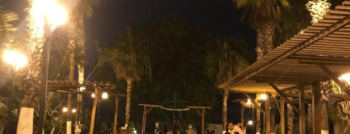 Parque de la Cruz is one of Posti che sono piaciuti a Julio D..