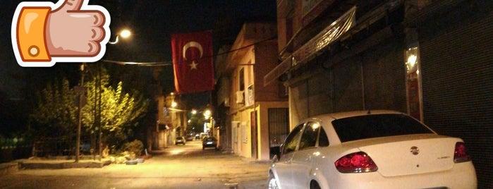 Çifte Minare is one of Locais curtidos por Nalan.