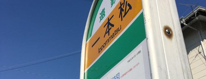 一本松バス停 is one of 遠鉄バス  51|泉高丘線.