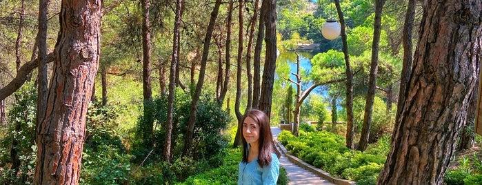 Atatürk Kent Ormanı is one of Tempat yang Disukai Mujdat.