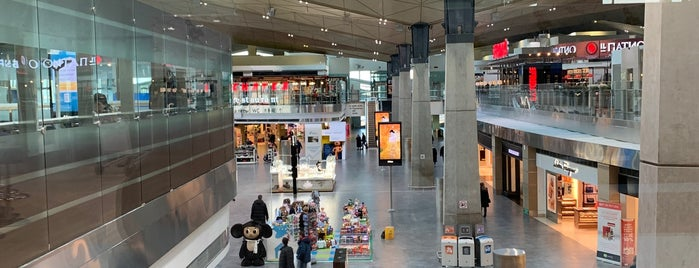 Aeroflot International Lounge is one of Posti che sono piaciuti a Canan.