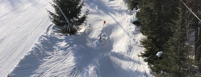 Cafétéria Mont Saint-Sauveur is one of Stevenson Favorite Skiing Mountains.