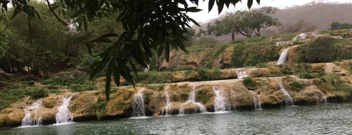 Wadi Darbat is one of Olgaさんのお気に入りスポット.