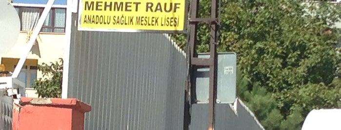 Mehmet Rauf Lisesi is one of Galip : понравившиеся места.