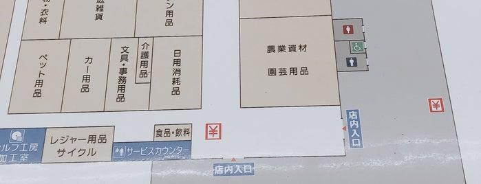 ホームセンターコーナン 木津店 is one of Shigeo : понравившиеся места.