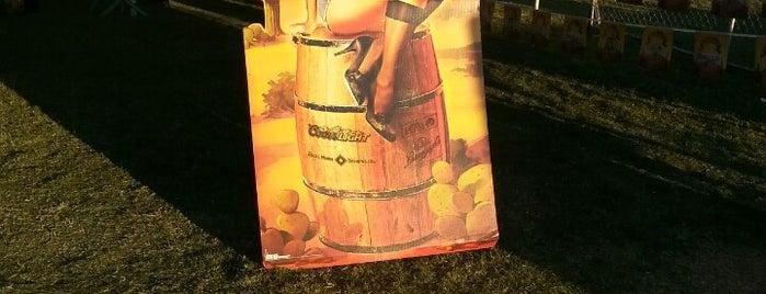 Oktoberfest At Salt River Fields is one of Food & Drink.