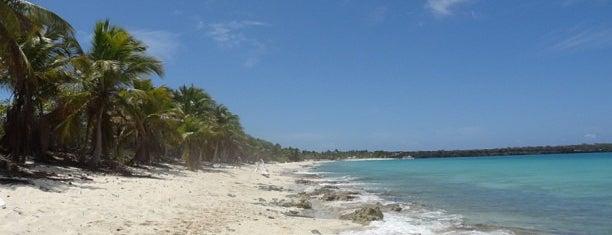 Isla Catalina is one of Posti che sono piaciuti a Manuela.