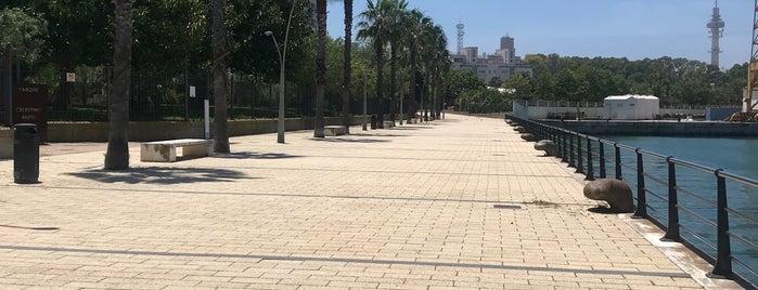 Paseo de la Bahia is one of Cádiz.