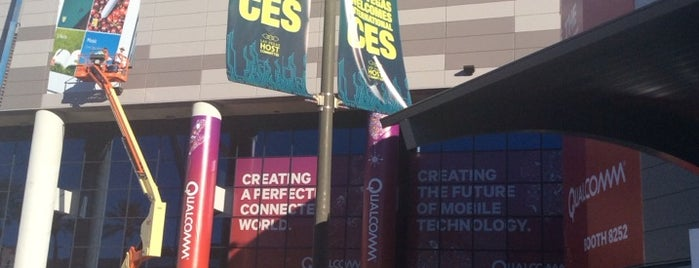 CES 2014 is one of Lugares favoritos de kerry.