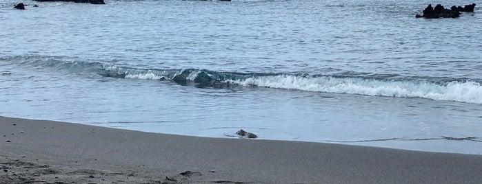 49 Black Sand Beach is one of Hawaii.