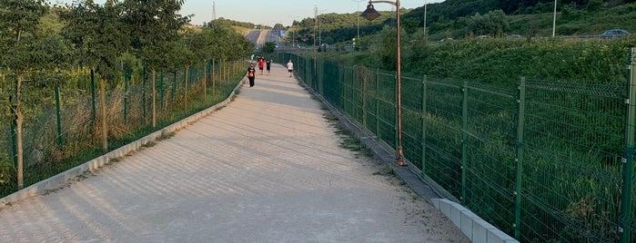 Özgecan Aslan Yürüyüş Parkuru is one of Orte, die Bulent gefallen.