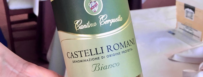 Ristorante Da Arturo all'Antica Aurelia is one of Itálie.