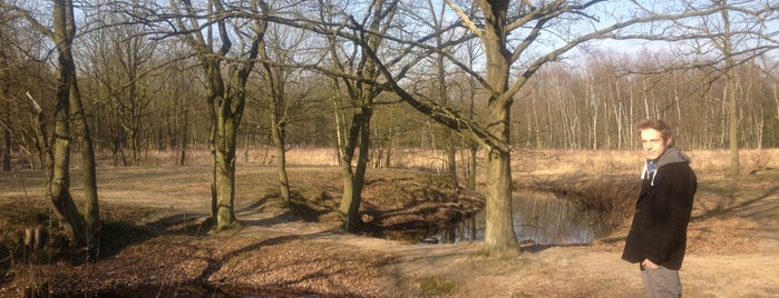 Kesselse Heide is one of Belgium / Parks / Provincial Parks.