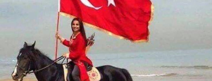 3.MATBAACILAR SİTESİ is one of Alyans.