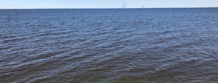 Морская терраса is one of สถานที่ที่ Георгий ถูกใจ.