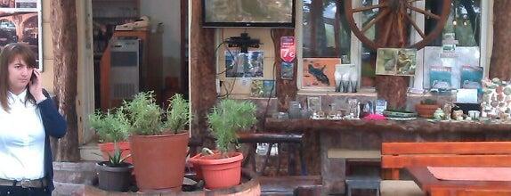 "Taverna ""Crmnički vinotok"" is one of Montenegro Wifi spots."