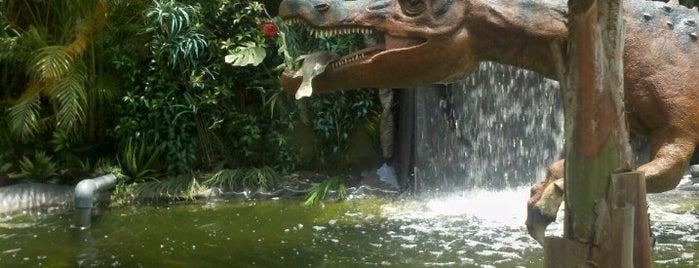 Dino Quest is one of Jennifer 님이 좋아한 장소.