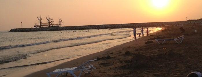 Evrenseki Plajı is one of Posti che sono piaciuti a Yılmaz.