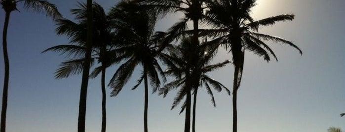 Praia da Baleia is one of Ranna 님이 좋아한 장소.