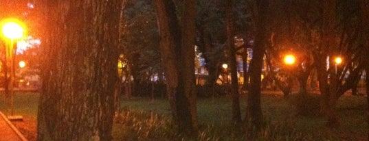 Parque Fracalanza is one of Nicoli 님이 좋아한 장소.
