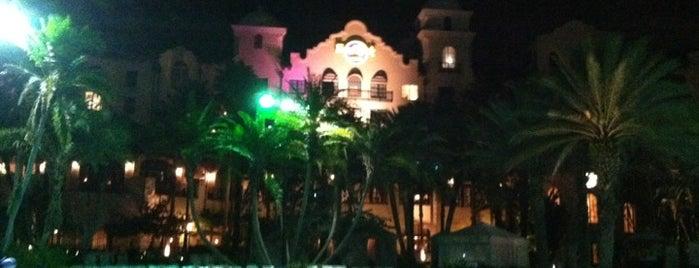 Hard Rock Hotel Beach Pool is one of Florida.
