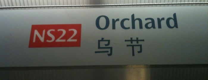 Orchard MRT Station (NS22) is one of Transport SG.