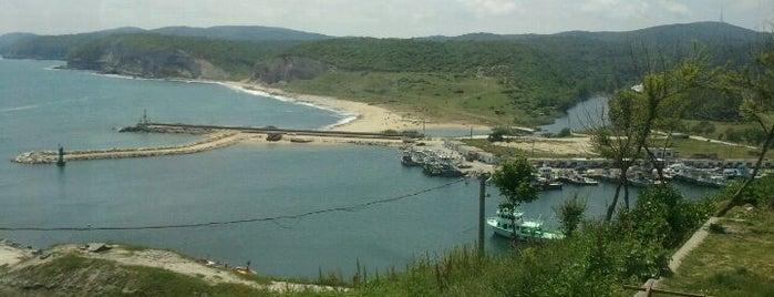 Deniz Feneri Restaurant is one of yenilesi.