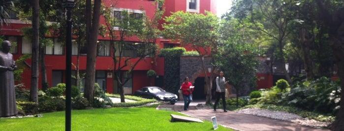 Universidad Panamericana is one of Universidades Ciudad de México.