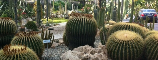 Orto Botanico is one of SICILIA - ITALY.