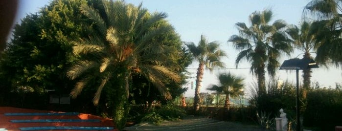 Club Sun Heaven Hotel is one of Orte, die Yunus gefallen.