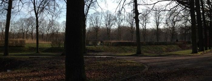Begraafplaats Schoonselhof is one of 80 must see places in Antwerp.
