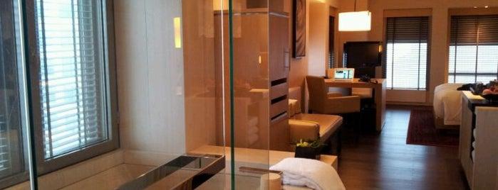 Park Hyatt Beijing is one of Modern Lux Hotels.