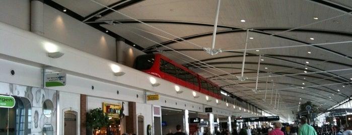 Detroit Metropolitan Wayne County Airport (DTW) is one of Airport.