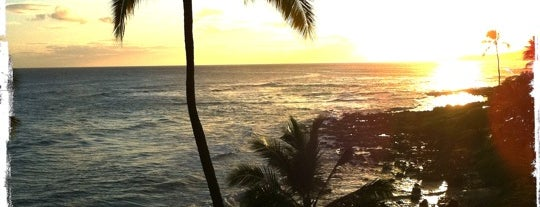 Poipu Beach is one of Stevenson Favorite US Beaches.