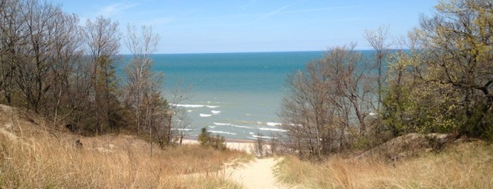 Indiana Dunes State Park is one of Chicago - Fun.