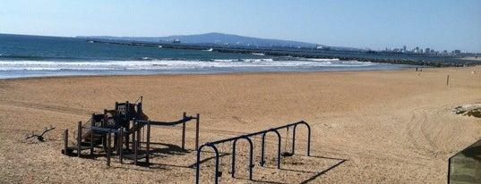 Surfside Colony, Ltd is one of OC Extraordinaire.