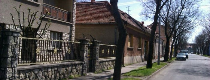 Sárvár is one of Zoltan's Liked Places.