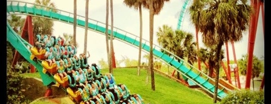 Busch Gardens Tampa Bay is one of Miami.