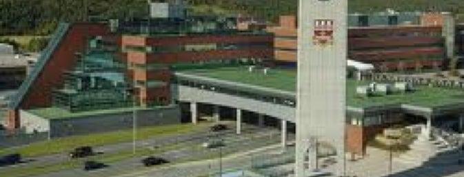 Memorial University of Newfoundland, St John's, NL is one of Marina 님이 좋아한 장소.
