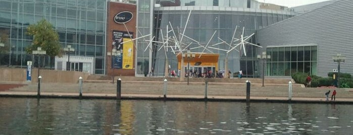 Maryland Science Center is one of Charms of Baltimore #visitUS #4sq.
