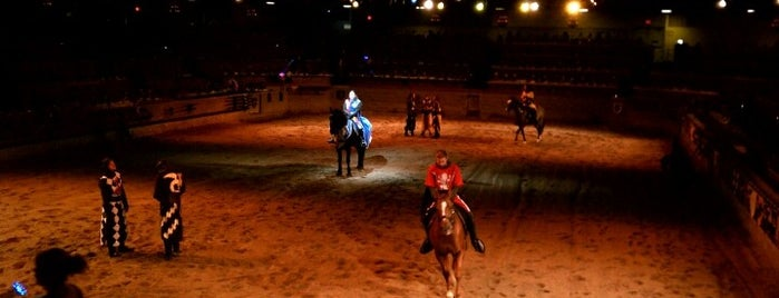 Medieval Times Dinner & Tournament is one of California Favorites.