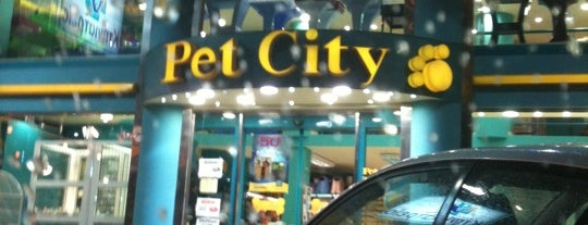 Pet City is one of My BFGM.