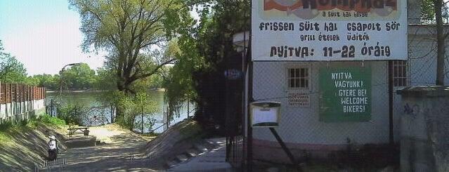 Kompház - A sült hal helye is one of Ahol jó enni.