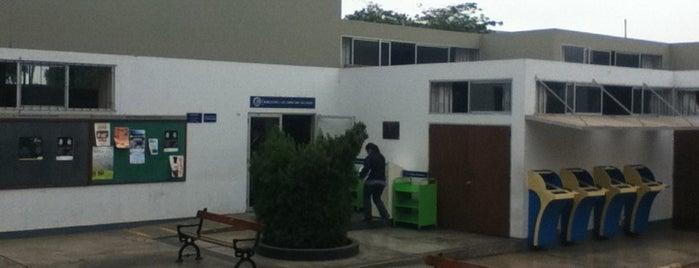 Facultad de Ciencias Sociales PUCP is one of PUCP.